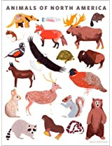 Oopsy Daisy Animals of North America by Small Adventure Posters That Stick Wall Decal, 18 by 24-Inch