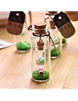 2 in 1 Luminous Message bottle | Unique way to give Love message's | Wedding Gifts, Anniversary gifts for Couple, Valentine Gifts for Husband, Gifts for Wife