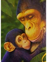 Mother And Chimp 1000 Piece Jigsaw Puzzle By White Mountain