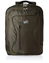 American Tourister Clive Nylon 24.3 ltrs Tobacco Laptop Bag (61W (0) 13 201)