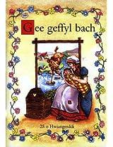 Gee Geffyl Bach: 25 o Hwiangerddi - 25 Nursery Songs