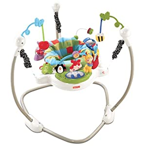Fisher-Price W9466 Discover 'n Grow Jumperoo