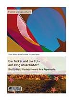 Die Türkei und die EU - auf ewig unvereinbar? Die EU-Beitrittsdebatte und ihre Argumente
