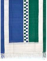 Multicolor Pochampally or Ikat Cotton Handloom Dupatta