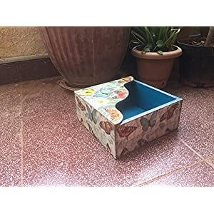 RTKS Creations Tissue Box - Butterfly
