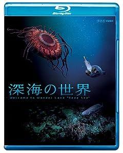 ノーチラス号が遭遇「摩訶不思議な深海生物」