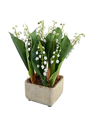 New Growth Designs Potted Lily Of The Valley