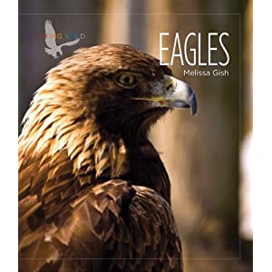 【クリックでお店のこの商品のページへ】Living Wild: Eagles [ペーパーバック]