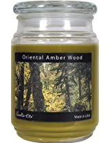 Candle-lite Essentials 18-Ounce Terrace Jar Candle, Oriental Amber Wood