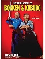 Introduction to Bokken and Kobudo