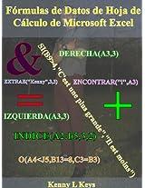 Fórmulas de datos de hoja de cálculo de Microsoft Excel (Spanish Edition)
