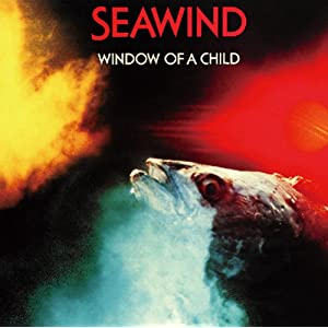 Window Of A Child