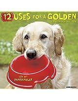 12 Uses for a Golden 2016 Calendar