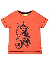 Buzzy Baby Boys' 12-18 Months Cotton T- Shirt (Orange)