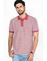 Red Cotton Poly Stripes Polo T Shirt
