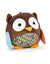 Skip hop Chime Ball Owl, Multi Color