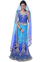 Denim Blue and Deep Sky Blue Net Embroidered Wedding Lehenga Choliin Large Size