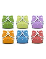 Thirsties Duo Wrap Snaps Size 1 Gender Neutral Colors 6 Pack with Reusable Dainty Baby Bag Bundle