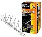 Bird-X STS-10-R Stainless Bird Spikes 10 foot Kit