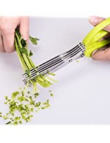 5 Blade Culinary Herb Scissors Stainless Steel with Cleaning Comb, For Fast Chopping, Soft Grip Silicone Handle, Multi-use Kitchen Shears (Green)