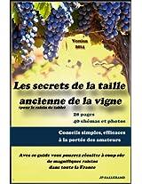 Les secrets de la taille ancienne de la vigne