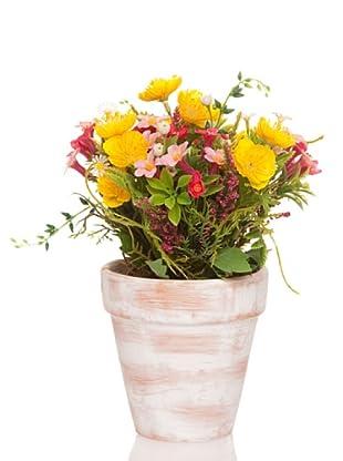 Concoral Maceta Flor surtida Amarillo/Fucsia