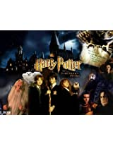 Harry Potter And The Sorcerer's Stone (Hindi)