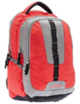 American Tourister Buzz Nylon Red and Grey Laptop Backpack