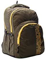 American Tourister Code Olive and Yellow Casual Backpack (R51 (0) 26 001)