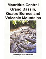 Mauritius Central Grand Bassin, Quatre Bornes and Volcanic Mountains: En Souvenir Indsamling Af Farve Fotografier Med Billedtekster: Volume 12 (Photo Albums)