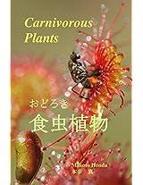 Carnivorous Plants: (Japanese Edition)