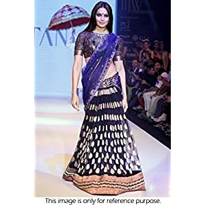 Bollywood Replica Bipasha Basu Net and Viscose Lehenga In Blue Colour NC299