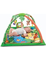 Fisher-Price Disney Baby Simba's King-Sized Play Gym (Discontinued by Manufacturer)