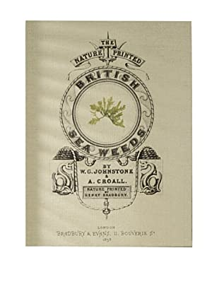 French Linen Collection Green British Seaweed Tapestry