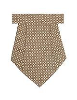 TieKart Men's Cravat (Brown)
