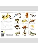 Lizards 2014  Wall Calendar