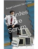 Apuntes sobre Scrum (Spanish Edition)