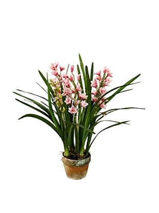 Winward Potted Faux Cymbidium, Mauve, Extra Large