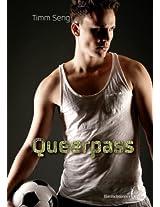 Queerpass (German Edition)