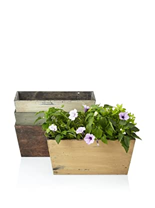 Wald Imports Set of 4 Rustic Garden Planters, Assorted