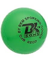 BKM Wind Cricket Ball for Tennis Garden Play Pack of 6 Green