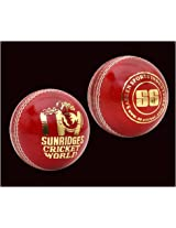 SS Cricket World Leather Ball