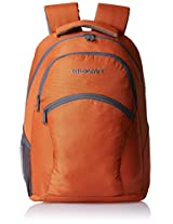 Wildcraft Nylon 21 Ltrs Orange Laptop Bag (Ace 2_Orange)
