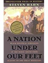 A Nation Under Our Feet - Black Political Struggles in the Rural South from Slavery to the Great Migration