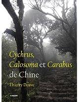 Cychrus, Calosoma Et Carabus De Chine (Pensoft Series Faunistica)