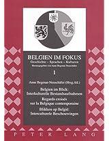 Belgien Im Blick: Interkulturelle Bestandsaufnahmen - Regards Croises Sur La Belgique Contemporaine- Blikken Op Belgie: Interculturele Beschouwingen (Belgien Im Fokus)