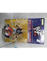 "Jakks WWF Special Edition ""Double J"" Series 6 Figure"