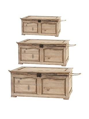 A&B Home Set of 3 Trunks