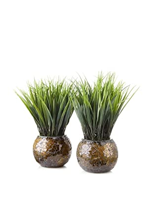 Laura Ashley Set of 2 Grass Mosaic Containers (Brown and Gold)