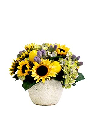 Creative Displays Sunflower & Hydrangea in Cream Pot